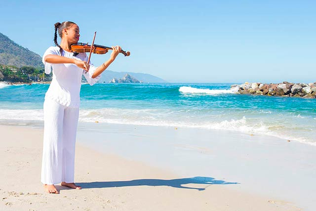 violinista music for the senses